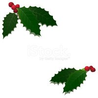 Holly,Leaf,Christmas,Berry,...