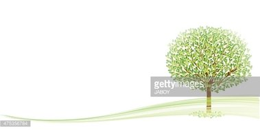Green Color,Material,Tree,L...