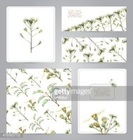 Set of banners, pattern, blank, and illustrations with flowers