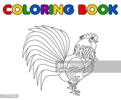 Gallo Da Colorare Stock Immagini Vettoriali Clipartme