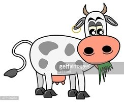 Cow Eating Grass Clipart Images High Res Premium Images