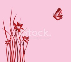 Butterfly - Insect,Flower,P...