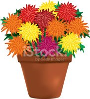 Flower Pot,Chrysanthemum,Fl...