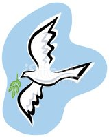 Dove - Bird,Symbols Of Peac...