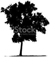 Tree,Vector,Silhouette,Blac...
