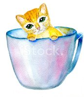 Whisker,Cup,Background,Dome...