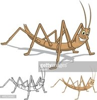 Detailed Stick Insect Cartoon Character with Flat and Line Art