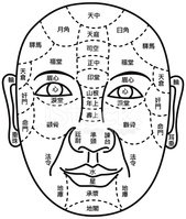 Acupuncture,Human Face,Plas...