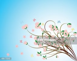 Cherry blossom, sakura branch with pink flowers