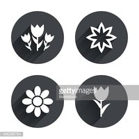 Symbol,Sign,Bouquet,Gift,Na...