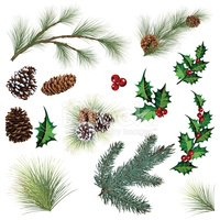 Holly,Pine Cone,Branch,Ever...
