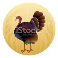 Turkey - Bird,Cartoon,Vecto...
