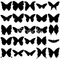 Butterfly - Insect,Silhouet...