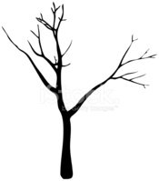 Tree,Bare Tree,Silhouette,D...