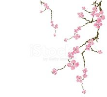 Blossom,Branch,Pink Color,V...