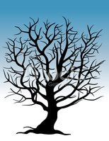 Dry Tree Clipart Images High Res Premium Images