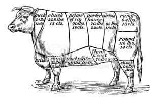 Cow,Beef,Cutting,Meat,Cattl...