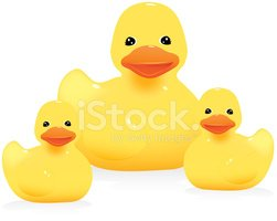 Rubber Duck,Yellow,Young Bi...