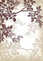 Branch Silhouette Background