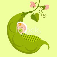 Baby,Baby Shower,Green Pea,...