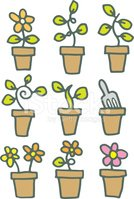 Flower Pot,Seedling,Flower,...