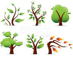 Tree,Cartoon,Leaf,Vector,Pl...
