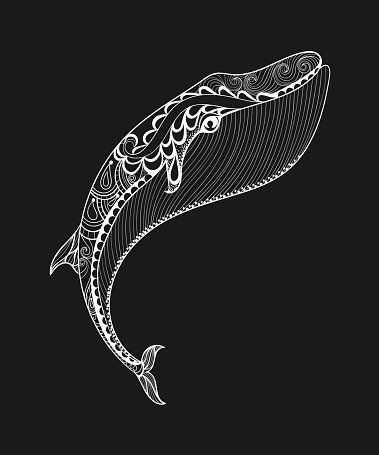 Vector zentangle white whale print for adult coloring page. Hand