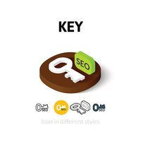 Key icon in different style