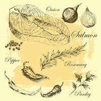 vector salmon steak hand drawn illustration with rosemary and pepper