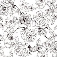 Floral seamless pattern with hand drawn roses.