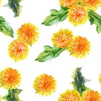 Seamless floral pattern. dandelions. watercolor
