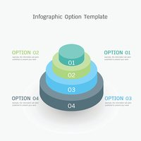infographic option template