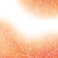 Flower background orange red white rose frame abstract illustration vector