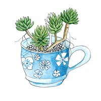 cactus in a cup. isolated. watercolor
