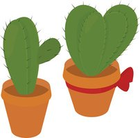 cactus in  brown pot,  prickly plant, thorny, spiny