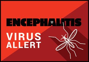 Encephalitis virus allert vector outline