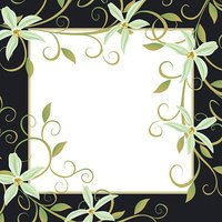 Background for text with white flowers orchids.