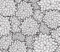 White,Black Color,Drawing -...