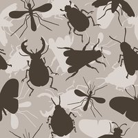 Insects. Bee. Beetles. Mosquito.
