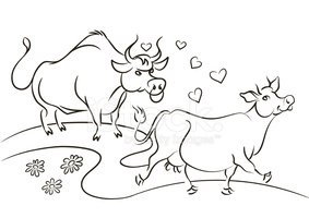 Cow,Bull - Animal,Love,Outl...