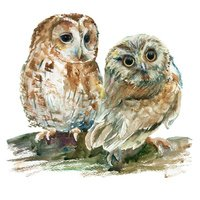 Watercolor owls on a branch.