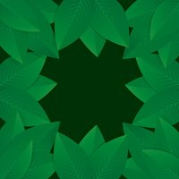Green Leafs. Vector illustration and Background.
