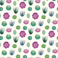 Succulent seamless pattern vector background