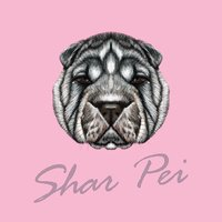 Vector Illustrated Portrait of Shar Pei dog.