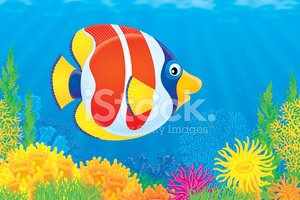Sea Life,Cartoon,Fish,Ocean...