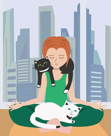 doing yoga at home with cats