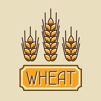 Emblem with wheat. Agricultural image natural golden ears of barley