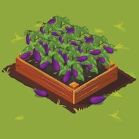 Vegetable Garden Box with Eggplant. Set 5