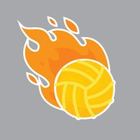 Volleyball isolated vector team icon illustration