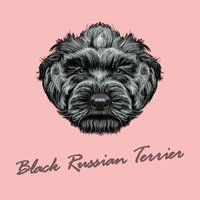 Russia,Black Color,Puppy,Te...